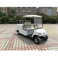 Wholesale Compact Electric Cargo Car , 2 Seater Electric Car With 2pcs Rear View Mirror from china suppliers