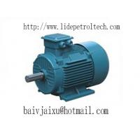 3 phase ac induction motors of ec91117697
