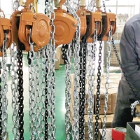 Wholesale Professional3 Ton Manual Chain Block , Small Hand Chain Hoist hand chain block from china suppliers