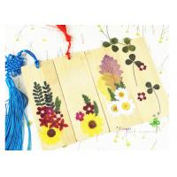 Bookmark Decor Material Dried Flower Petal Crafts Home Decoration