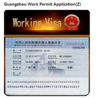 China Invitation Z Visa Of Timely