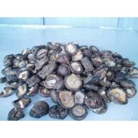 Wholesale Air Dried Whole Shiitake from china suppliers
