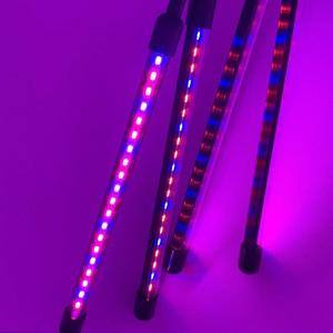 Wholesale SMD5050 650nm Full Spectrum LED Grow Light from china suppliers