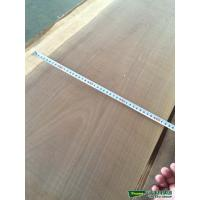 Wholesale walnut  veneer   oak natural  veneer from china suppliers