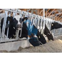 Wholesale Adjustable Metal Cattle Feeding Headlock Panel from china suppliers
