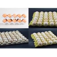 Quality Large Capacity Pulp Molding Equipment Egg Tray Egg Carton Production Line for sale