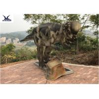 Wholesale Pachycephalosaur Robotic Dinosaur Garden Statue Soft And Smooth Surface Treatment from china suppliers