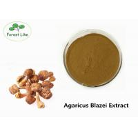 Wholesale Enhance Immunity  Agaricus Blazei Extract Powder 30% Polysaccharides from china suppliers