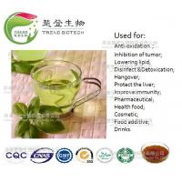 Wholesale 100% nature green tea extract polyphenols/EGCG/L- theanine from china suppliers