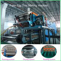 China egg tray machine production line with multilayer dryer on sale