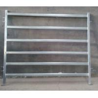 Wholesale Oval Cattle Panel from china suppliers