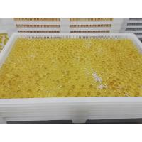 China Food Grade Plastic / Metal Tray And Trolly For Drying Capsule Candy on sale