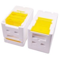 Wholesale Plastic Mating Breeding Box Beekeeping Queen Rearing from china suppliers