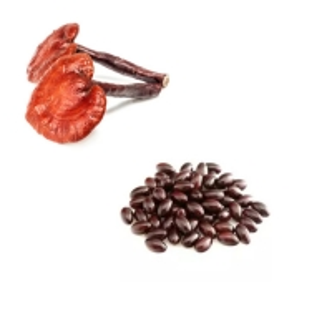 Wholesale Ganoderma Lucidum Spore Oil 500mg Herbal Softgel Capsules from china suppliers