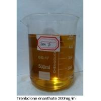China Enanthate Tren Anabolic Steroid Fastest Muscle Building Steroids  10161-33-8 on sale