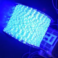 Wholesale led light rope from china suppliers