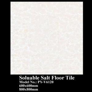 Soluable Salt Tile Polished PY-V6120