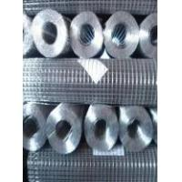 Wholesale Stainless Steel & Galvanized Welded Wire Mesh from china suppliers