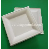 Biodegradable Disposable Sugarcane Pulp Paper Plate, 8 Inch Square Plate