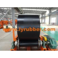 Shandong Longyuan Rubber Co. Ltd.