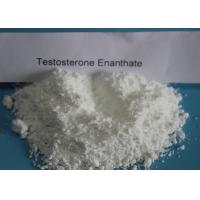 Test E Testosterone Anabolic Steroid CAS 315-37-7 For Power Gaining