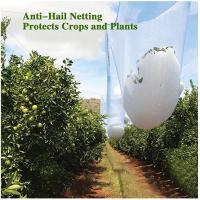 Wholesale Agricultural HDPE White Anti Hail Net , UV Stabilized Fruit Tree Netting from china suppliers