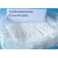Bulk Steroids Testosterone Enanthate CAS 315-37-7 For Asthma Muscle Gain Primoteston