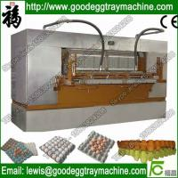Wholesale Automatic Chicken Egg Dish Making Machine Quality Egg Tray(FC-ZMG6-48) from china suppliers