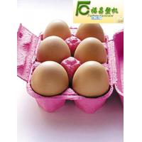 Wholesale paper egg tray/box making machine(FCZMW-8) from china suppliers