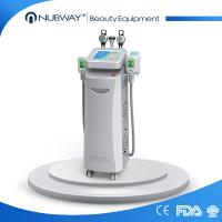 Wholesale 10 water tank cooling sculpt fat freezing cryolipolysis with 5 handles from china suppliers