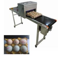 Egg Expiration Date Stamp MachineWith Various Colors Food Grade Ink To Choose