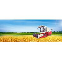 Buy cheap 4LZ-6 Grain Combine Harvester from wholesalers