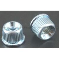 Wholesale Nut/Nuts/Insert Nuts/Pipe Nuts/Round Nuts/Shelf/Suppoeter from china suppliers