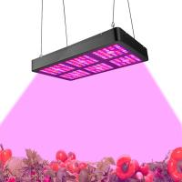 Wholesale Low Power Consumption Indoor LED Grow Light Full Spectrum Growth Light 400W - 800w from china suppliers