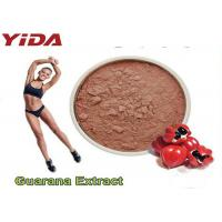 Guarana Extract Natural Weight Loss Steroids 10% 20% Purity Reduced Appetite