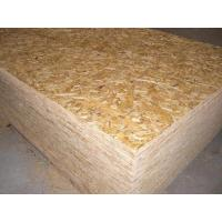 Wholesale Commercial Plywood,okoume Face/back,hardwood core from china suppliers