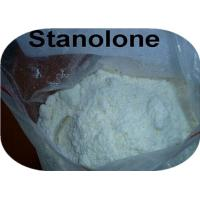 Professional Raw Steroid Powder Stanolone / Androstanolone / Dht For Muscle Strength