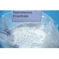 Wholesale Body building; Steroid Hormone;Testosterone Enanthate ;CAS NO.:315-37-7 ;Specification:ISO 9001;CF: C29H46O3 from china suppliers