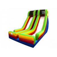 Wholesale Double Lane Inflatable Large Slide With Protect Net On Top For Party from china suppliers