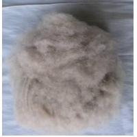 Wholesale Pashmina fibre from china suppliers