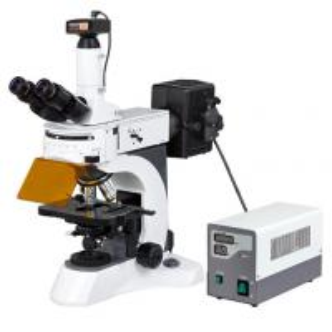 9.0 MP Camera Digital Epi Fluorescent Microscopy for Disease Examination/Upright fluorescence microscope