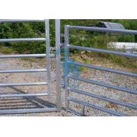 China Free Standing Powder Coated Metal Fence Panels , Plate For Animals' Prairie wholesale