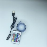 Wholesale IP65 2M 2.4W RGB Ribbon Lights from china suppliers