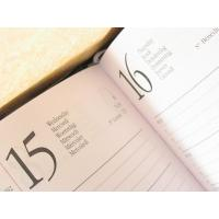 Wholesale 2012 PU diary from china suppliers