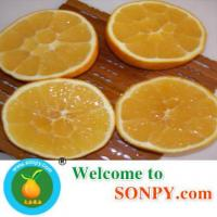 Wholesale Fresh Valencia from china suppliers