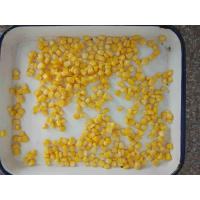 Wholesale Canned Sweet Corn from Canned Sweet Corn Supplier