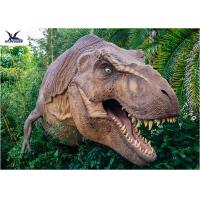 Wholesale Dinosaur Yard Statue With Realistic Head Model , Dinosaur Garden Sculpture  from china suppliers
