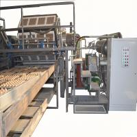 Wholesale Paper Egg Tray / Fruit Tray Making Machine With Aluminum Molds High Speed from china suppliers