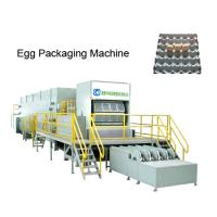 Wholesale high quality egg tray machine,rotary egg tray machine from china suppliers