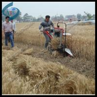 Wholesale new design wheat reaper and binder from china suppliers